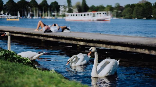 Hamburg Stadtentwicklung
